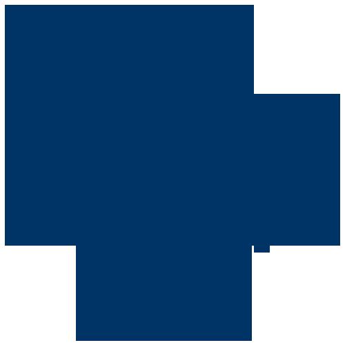 bullet-flowe-icon